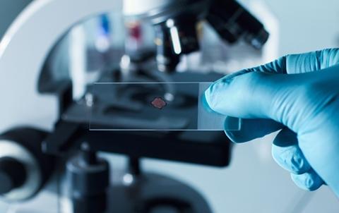 三峡医学检验实验室
